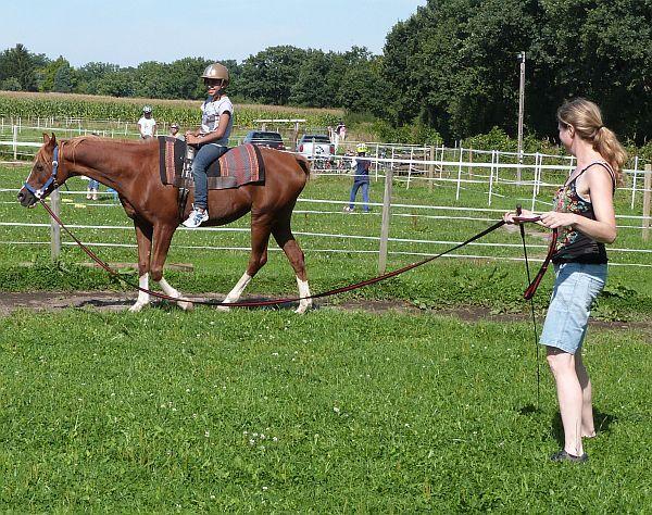Puh, so ein Pferd ist doch ganz schön groß. Gut, dass es die Longe gibt und an deren Ende die erfahrene Trainerin.