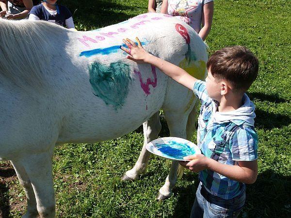 Beauty, Diamant oder Prinz? Nein, mein Pferd heißt natürlich wie ich: Mohamad.
